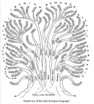 Family tree of the indo-european languages. Credit: Wikimedia Commons